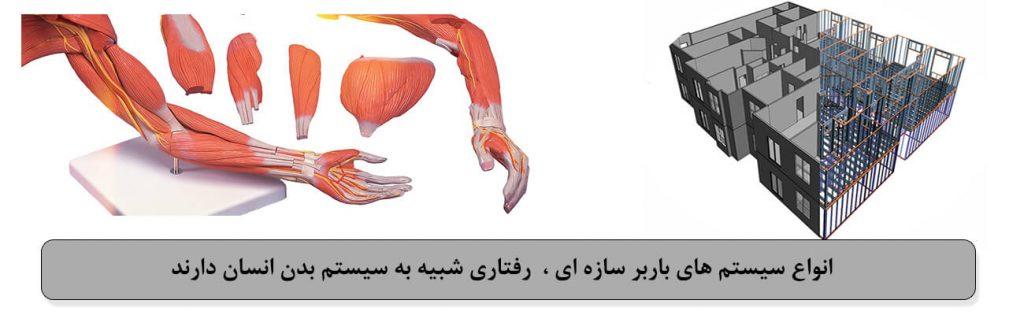 سیستم باربر سازه ای و سیستم بدن انسان